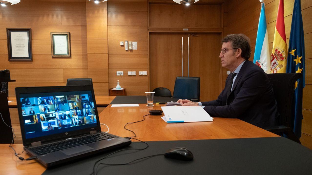 El presidente de la Xunta, Alberto Núñez Feijoo, durante la videoconferencia de los presidentes autonómicos con Pedro Sánchez