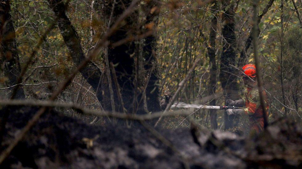 Un bombero participa en las labores de extinción de un incendio declarado en la Reserva de la Biosfera de Muniellos (Asturias), considerado como el robledal mayor y mejor conservado de España, en 2017