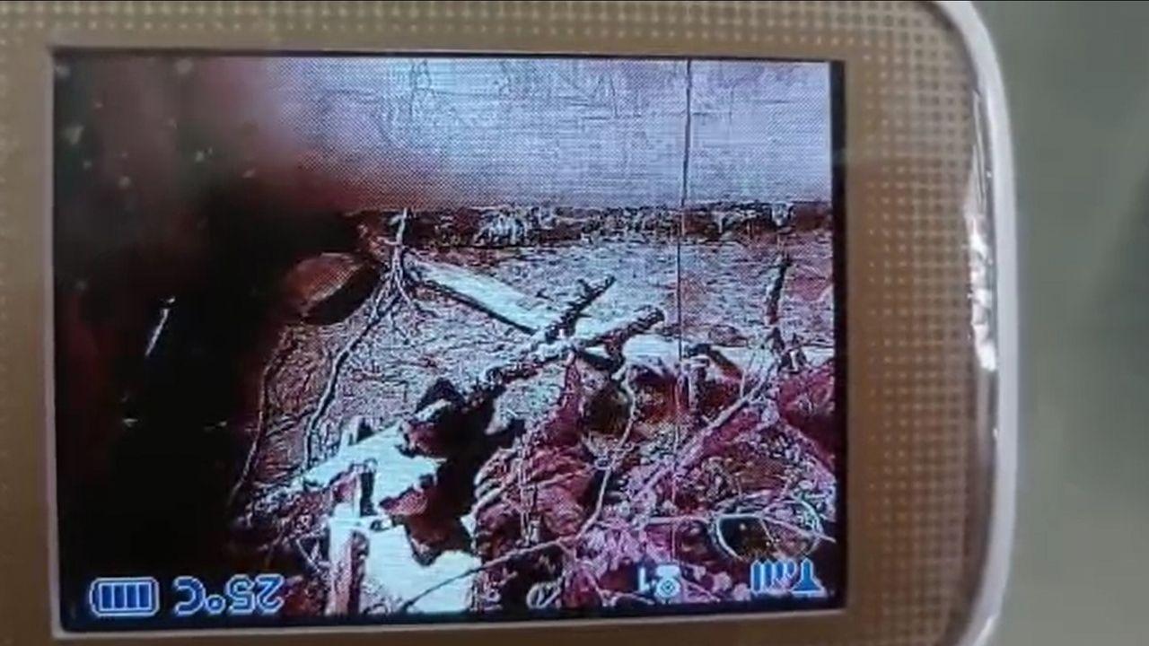 Cría de oso huérfana localizada en Cubia.Intervención de los bomberos en la vivienda afectada