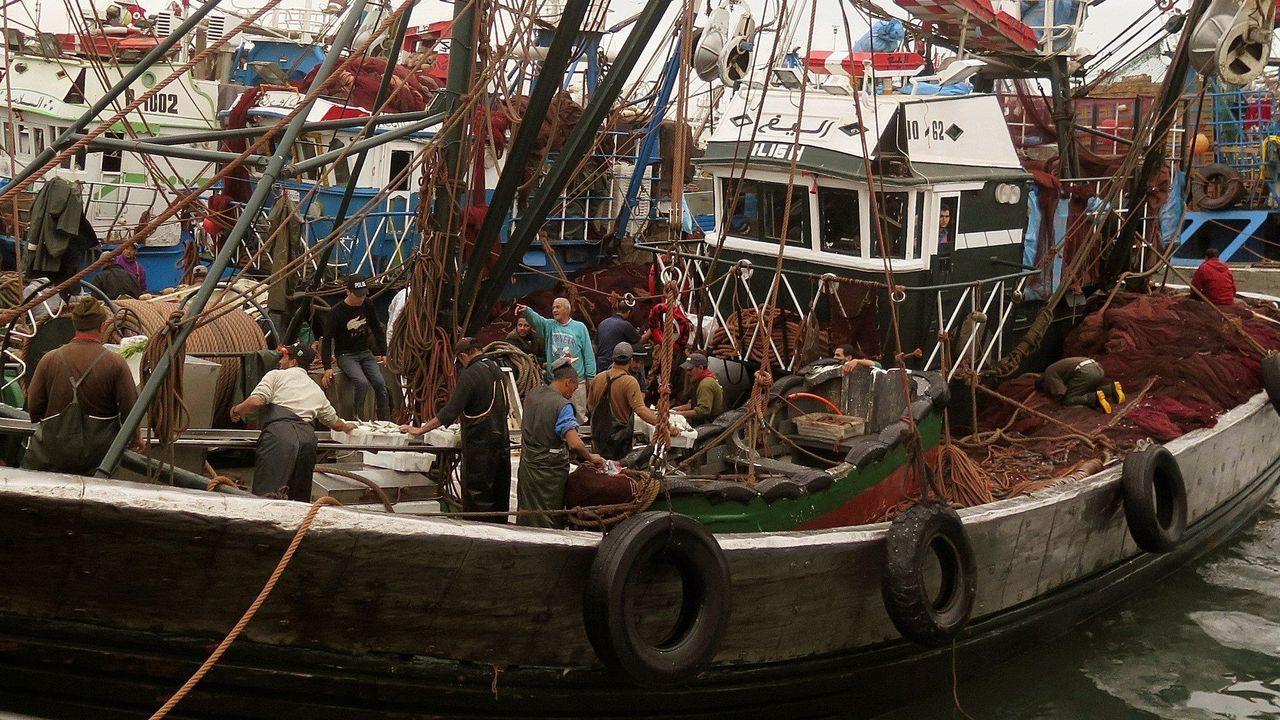 Niños del colegio divino maestro derriban un muro por el dia de la paz.Un barco pesquero marroquí en el puerto de Dajla
