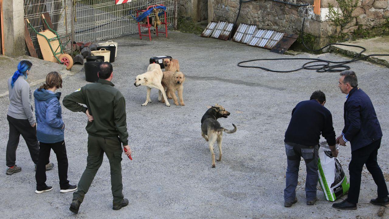 Fiesta Hijos del Perreo en la discoteca Litmar de Sarria en diciembre