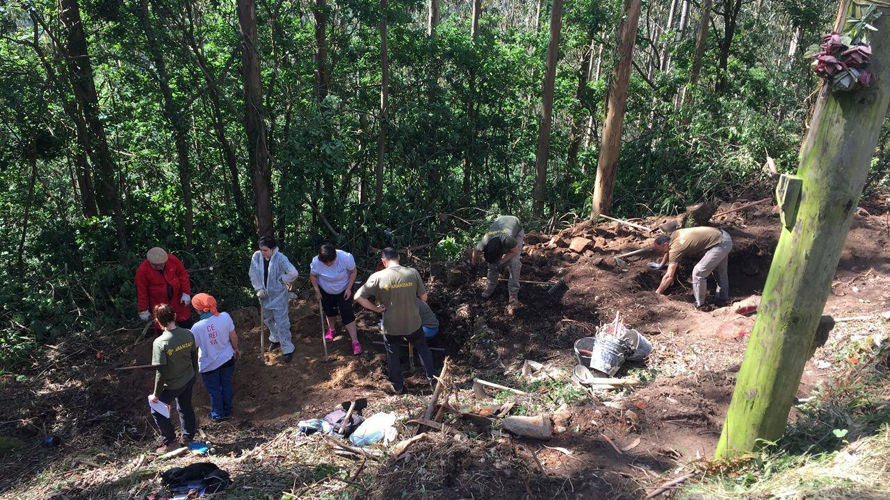 Imágenes de la exhumación de Ángel Fernández en la fosa de La Canalona