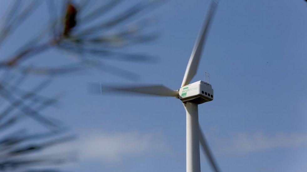 ¿Habría salvado la cosecha este ventilador gigante?.Parque eólico en el pico Aguión