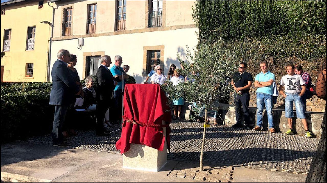 Un momento del acto celebrado en la calle Falagueira, donde se descubrió un monolito con una placa conmemorativa y se plantó un olivo