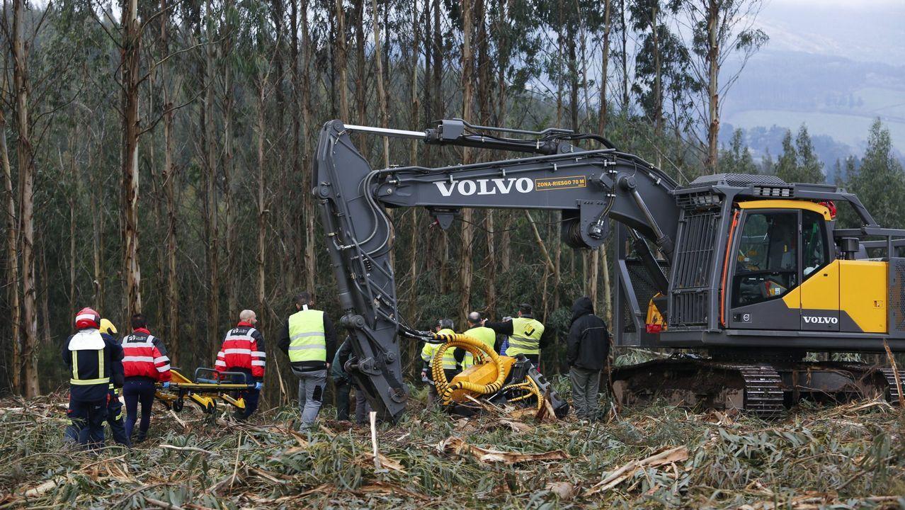 Vista general de la cárcel de Asturias.Imagen de archivo de un accidente en el sector forestal, uno de los que presentan una elevada siniestralidad laboral