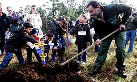 Cada árbol llevará el nombre de un niño y una parroquia diferente