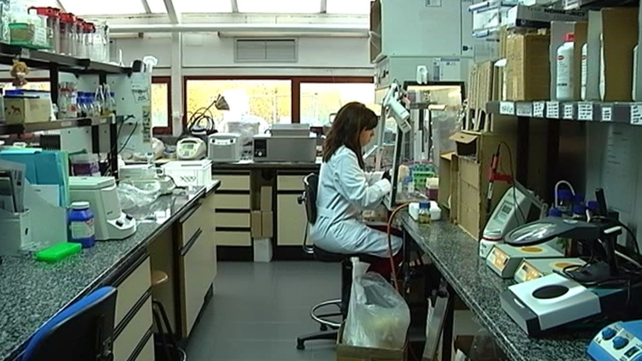 Un laboratorio del IPLA