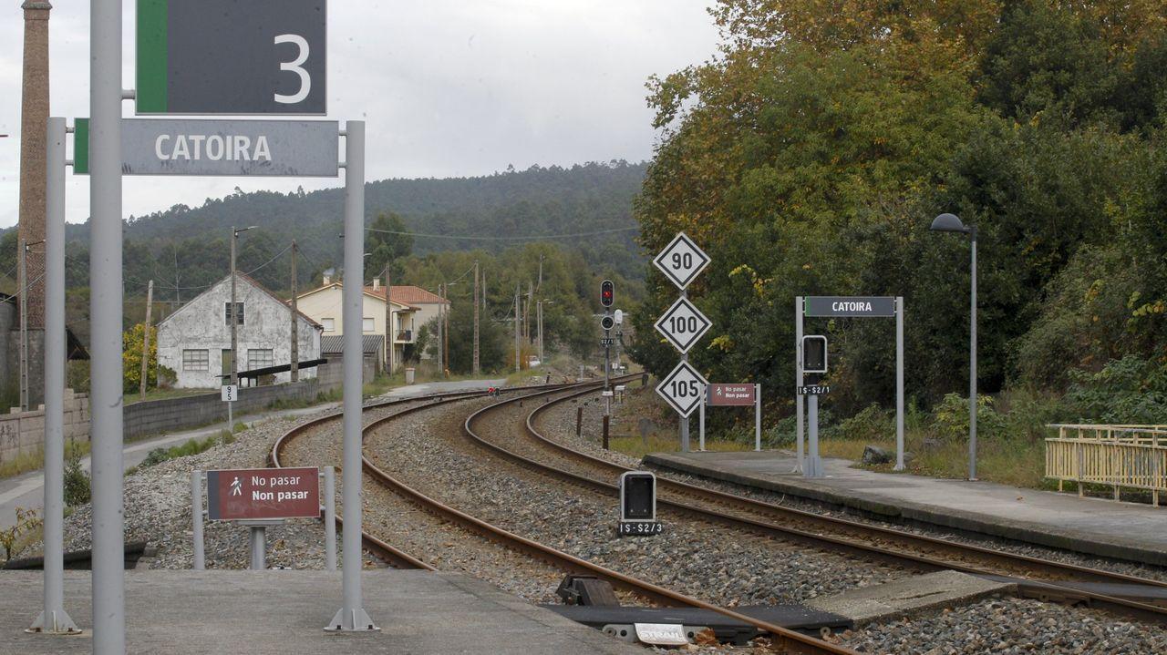 Un tren que circulaba por la zona tuvo que detenerse mientras se solucionaba el incidente