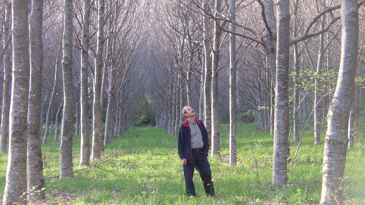 Juan Ramón Gallastegui en medio de una plantación de frondosas en Boqueixón