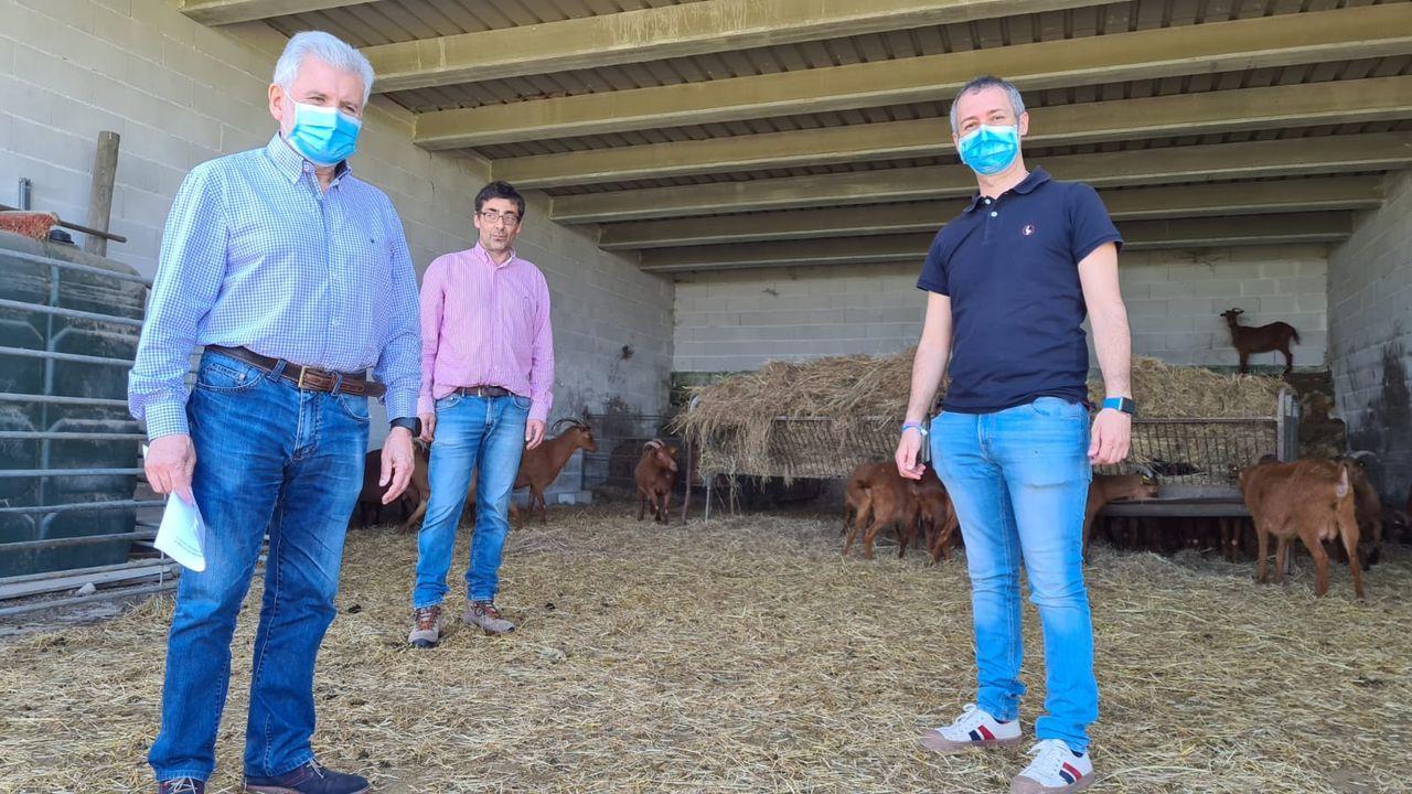 Rosendo Fernández visita la finca de Armariz