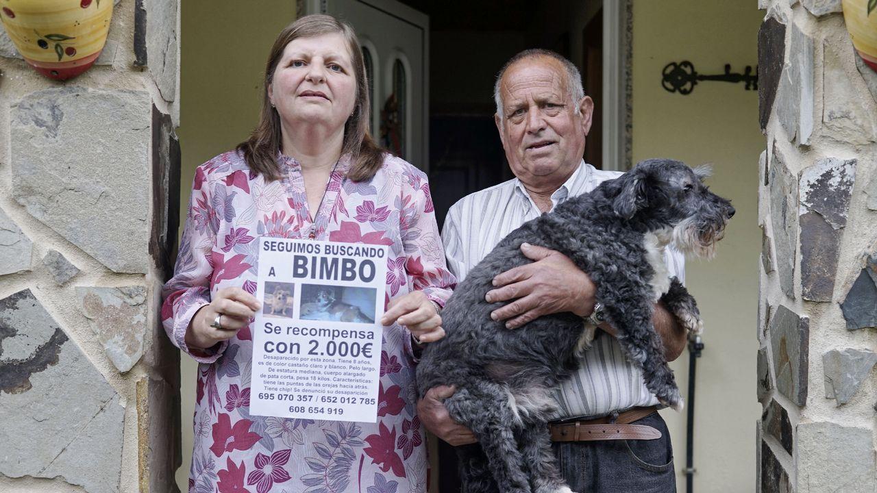 María José Álvarez y Emilio Seara buscan a su perro Bimbo desaparecido el 24 de abril