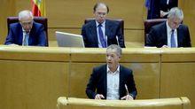 El senador del PSOE Ander Gil