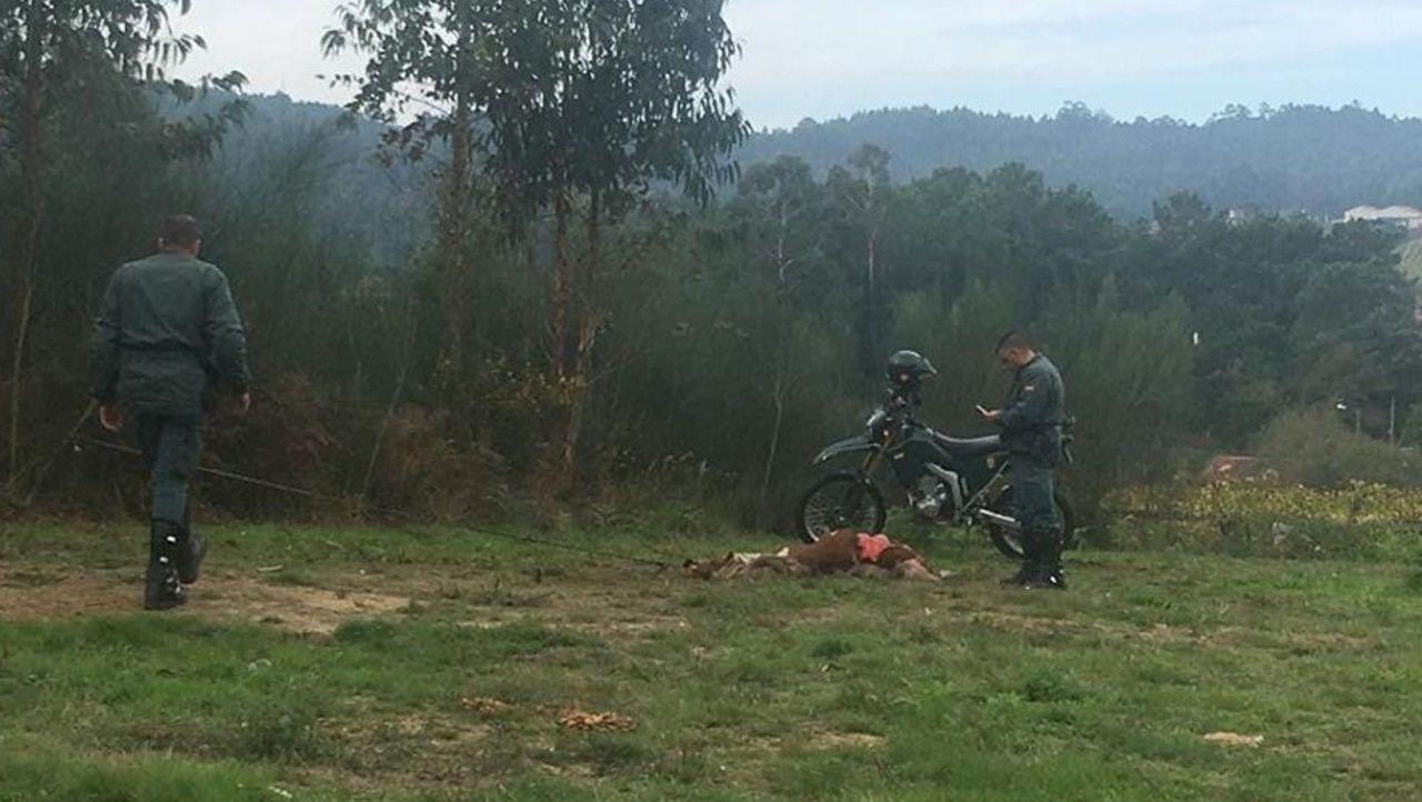 Incendio en Arteixo.La Guardia Civil se hizo cargo del capitán del petrolero nada más llegar a tierra