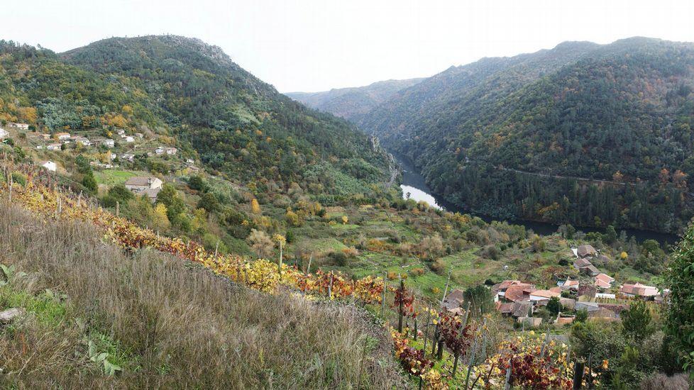 Vista de las aldeas de Cibrisqueiros (izquierda) y Ribas de Sil, en el municipio de Pantón