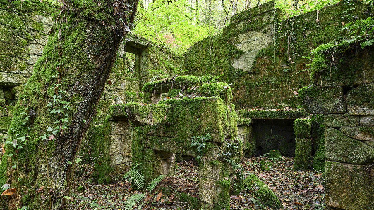Ruina de uno de los molinos que reciben el nombre de O Calderilla