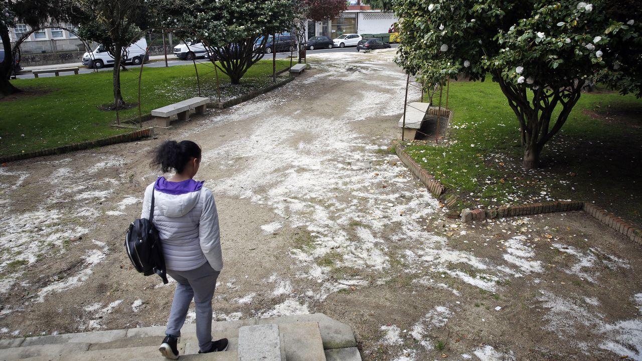 Así afronta Arousa el primer día laboral en estado de alarma.Los rastros de sal son bien visibles en el parque vilagarciano