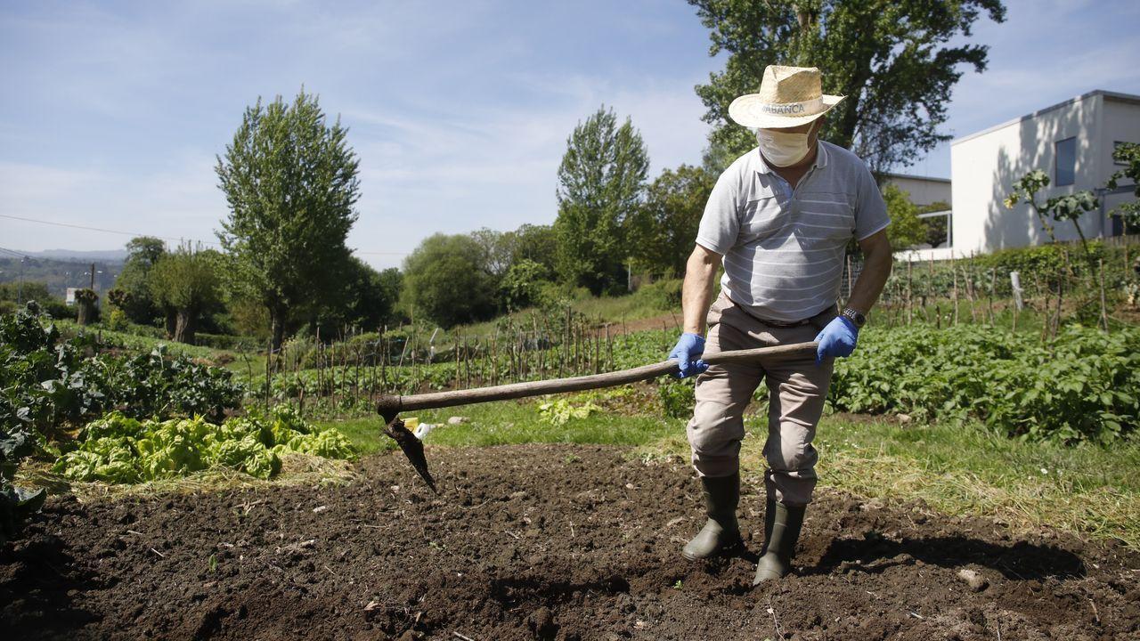 Un vecino de Casás preparando el huerto