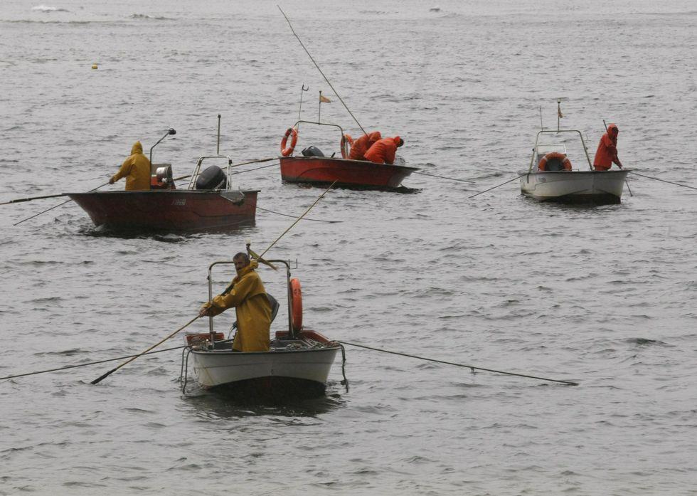 El marisqueo de a flote captura bivalvos de alta calidad que vende en la lonja de Campelo.