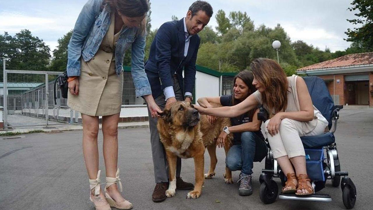 Visita de miembros del equipo de gobierno al Albergue de Animales