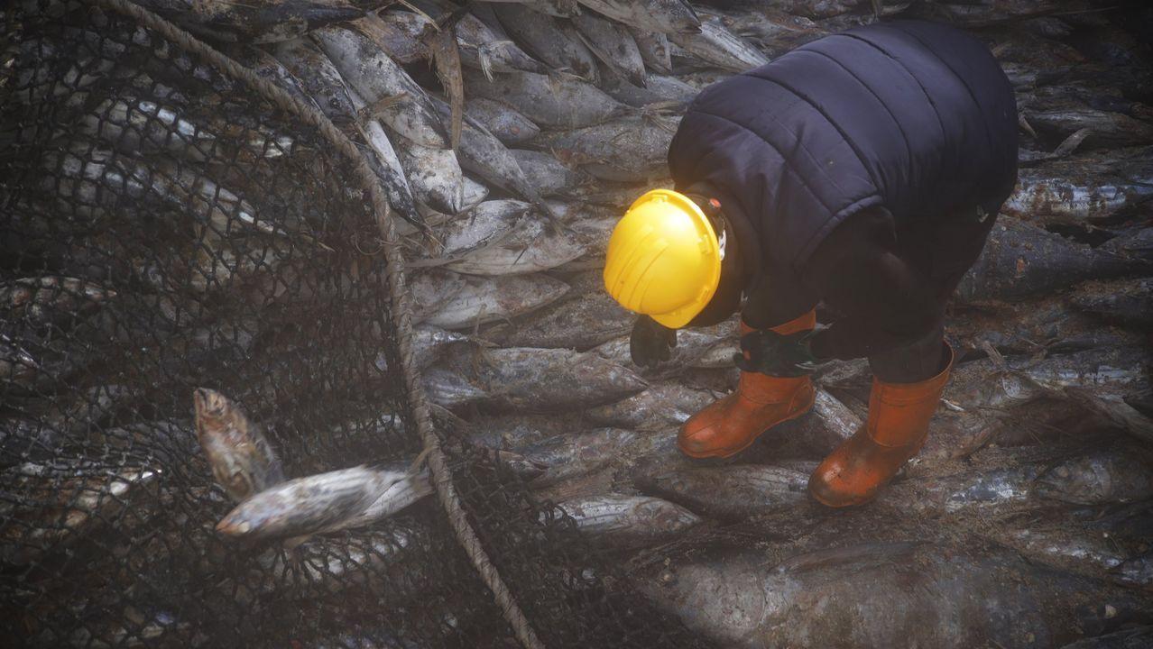 Imagen de archivo de un tripulante de un atunero