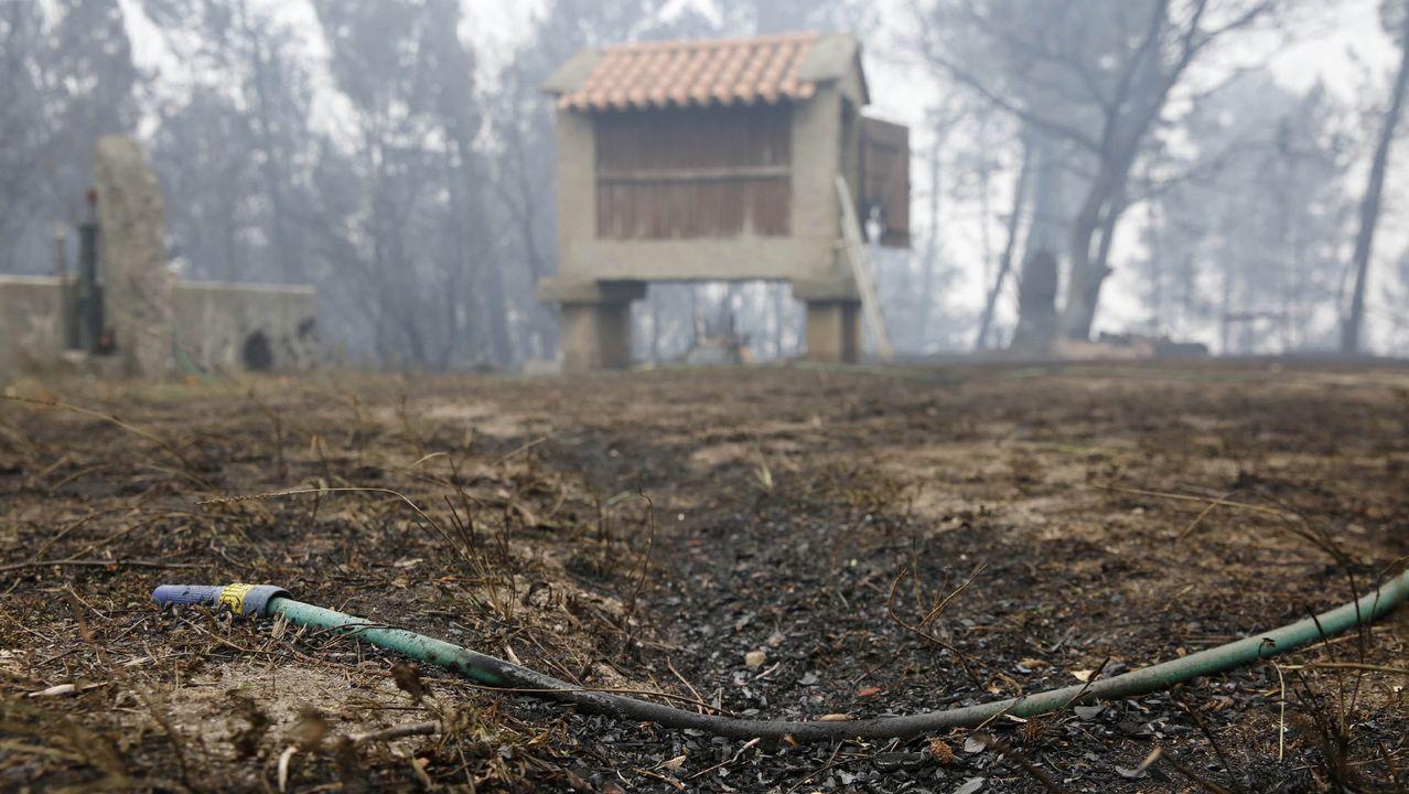 Las consencuencias del fuego en Melón