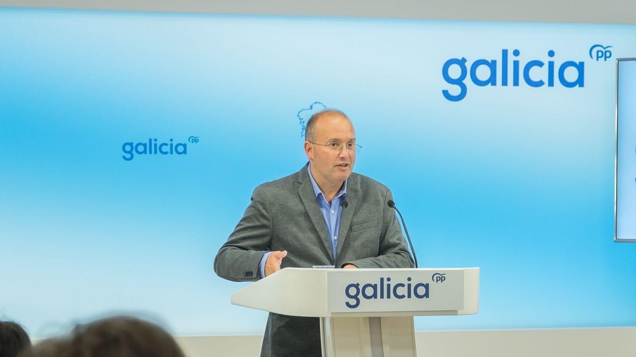 El secretario general del PPdeG, con el nuevo logo del partido