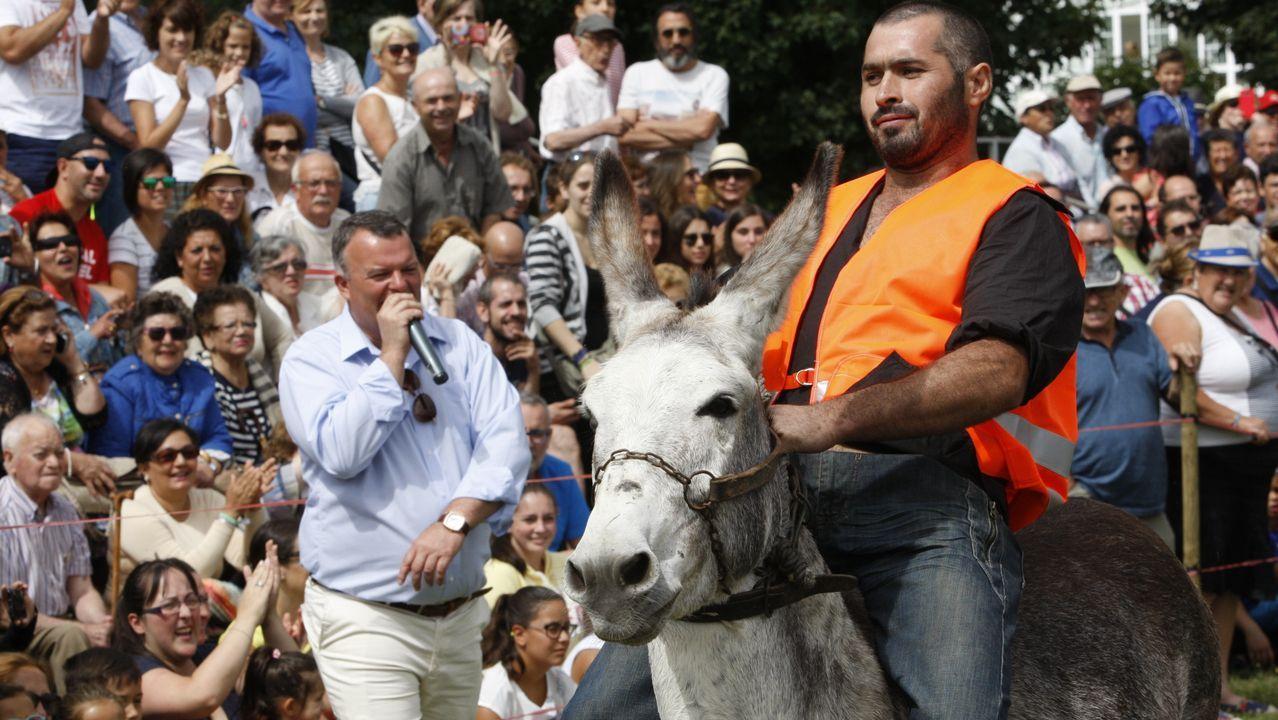 Los burros, los jinetes y el público... la carrera de Escairón en imágenes.El alcalde de Santa Comba, David Barbeira, gobernará el municipio durante los dos pirmeros años de mandato