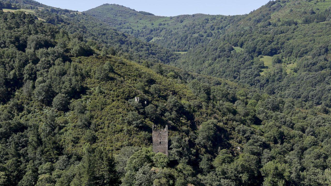 Diez propuestas para un baño de bosque en Galicia.El equipo de rodaje del documental entrevista al alcalde de Monforte frente a la entrada principal del Ayuntamiento