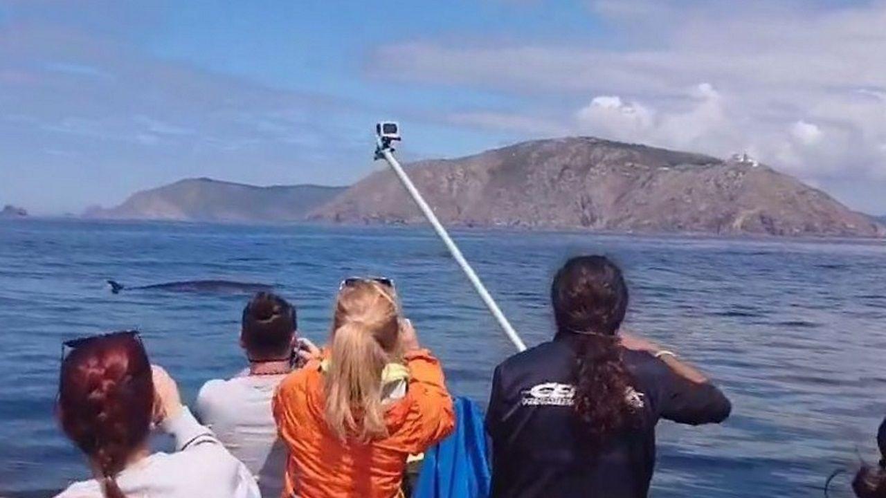 Así quedaron las embarcaciones atacadas por las orcas en Cedeira.Protección Civil de A Pobra lleva trampeando en el entorno de Cabío y A Illa desde el 2017