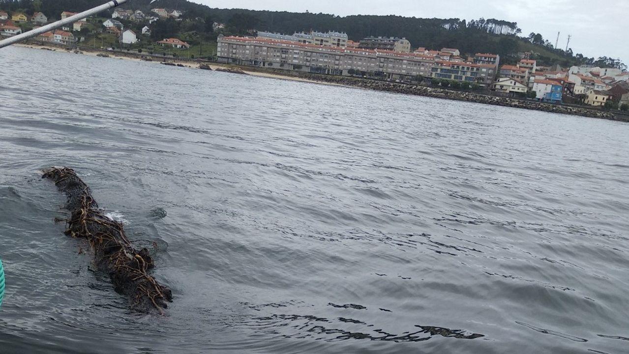 Imagen de archivo de barcos atracados en el puerto de Cedeira, base del pesquero que se hundió y del que lo rescató, y adonde han sido trasladados los dos náufragos