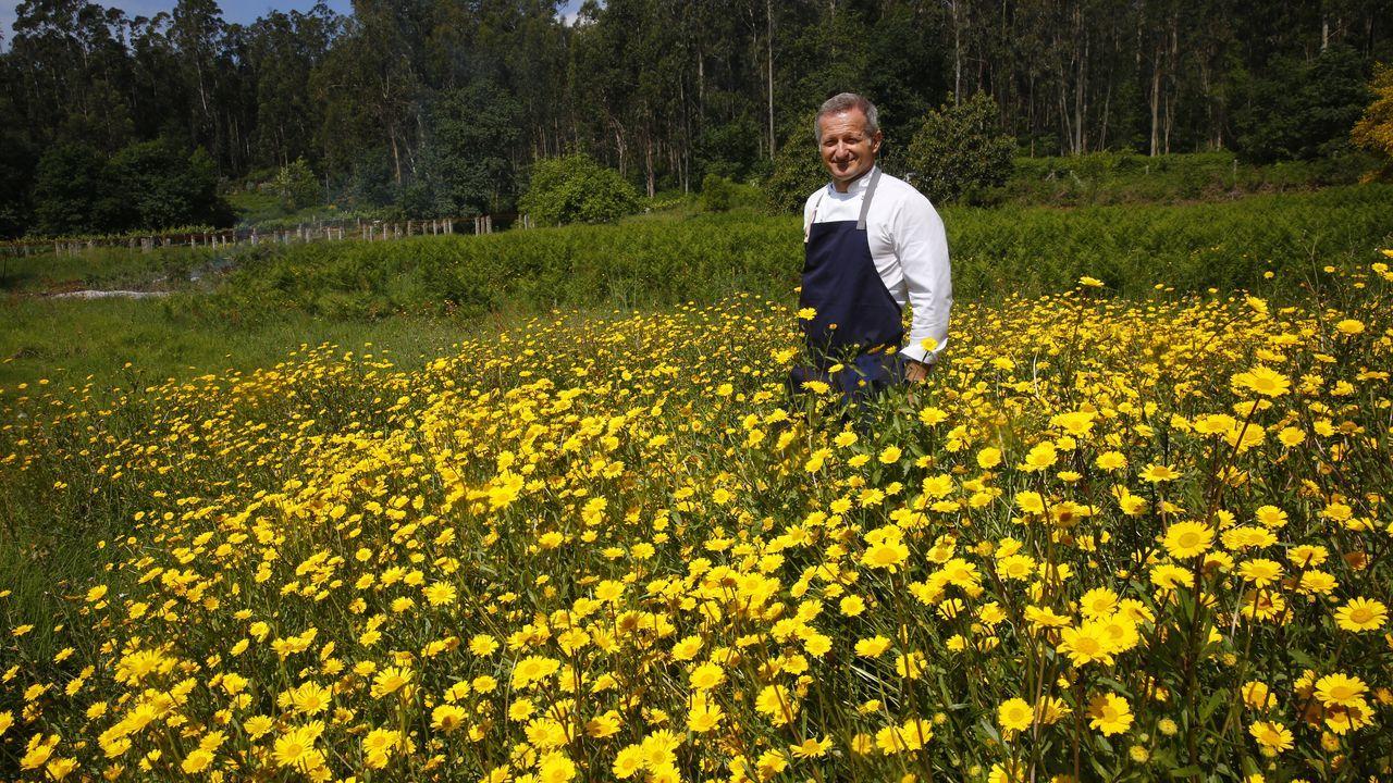 El chef Pepe Vieira, en la finca que en unas semanas será el gran huerto de su restaurante