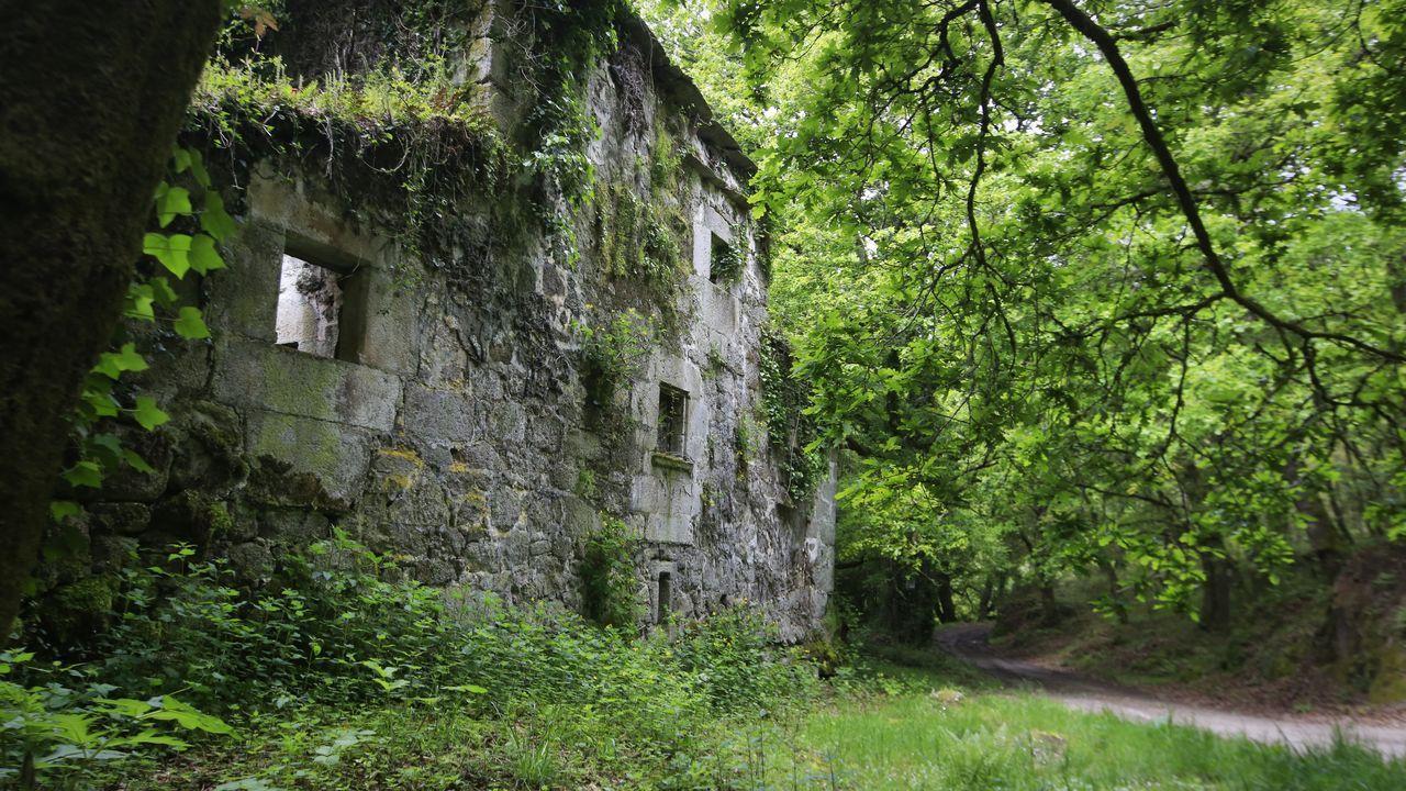Las ruinas de una antigua fortaleza conocida como Casa Torre de Arriba nos advierten de que hemos llegado a Soutomerille