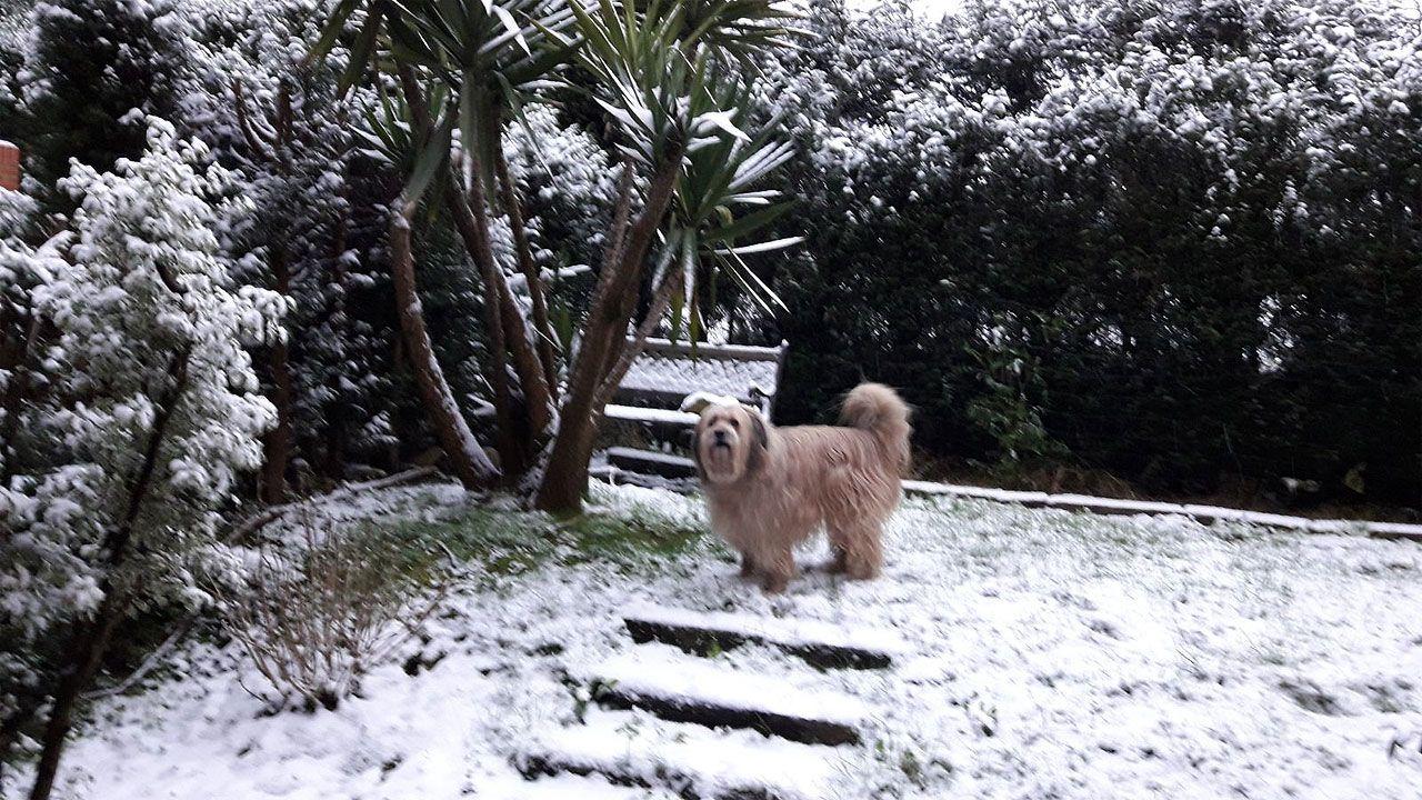 Nieve en Oviedo.Un rincón nevado en La Fresneda