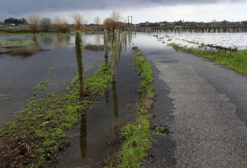 El agua seguía ayer estancada en muchas fincas de la parcelaria de Oubiña.