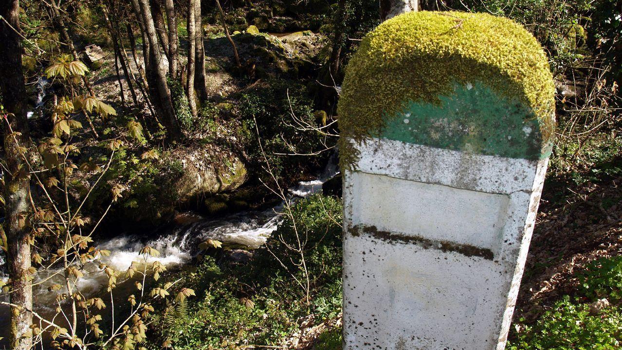 Mojón comarcal cubierto de musgo cerca de Chantada