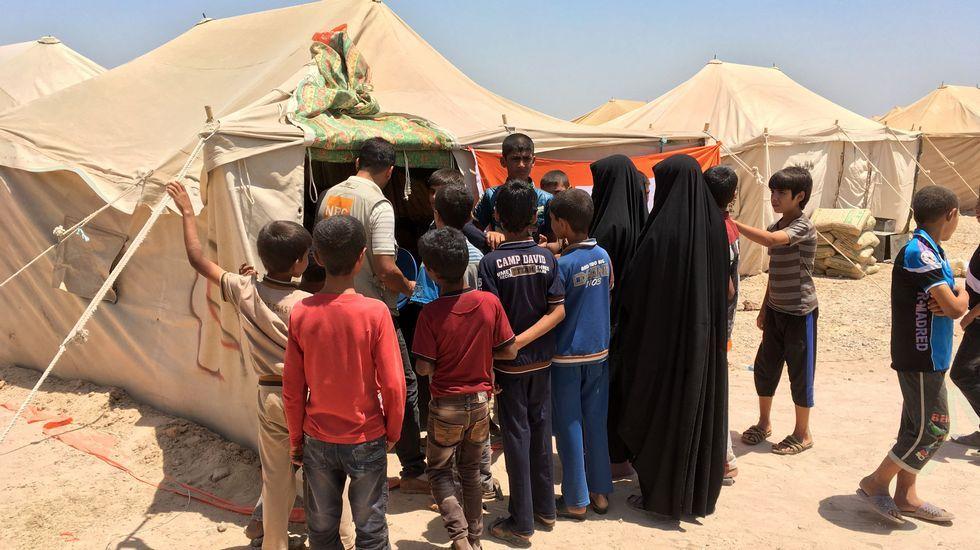 Nueva masacre terrorista en Irak.El Gobierno pidió a los ciudadanos de Faluya que abandonen la ciudad o que permanezcan en sus casas