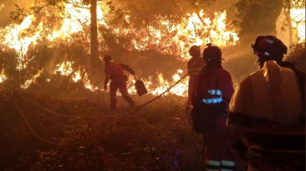 Vacas.Los efectivos de la UME luchando contra el incendio de Seroiro