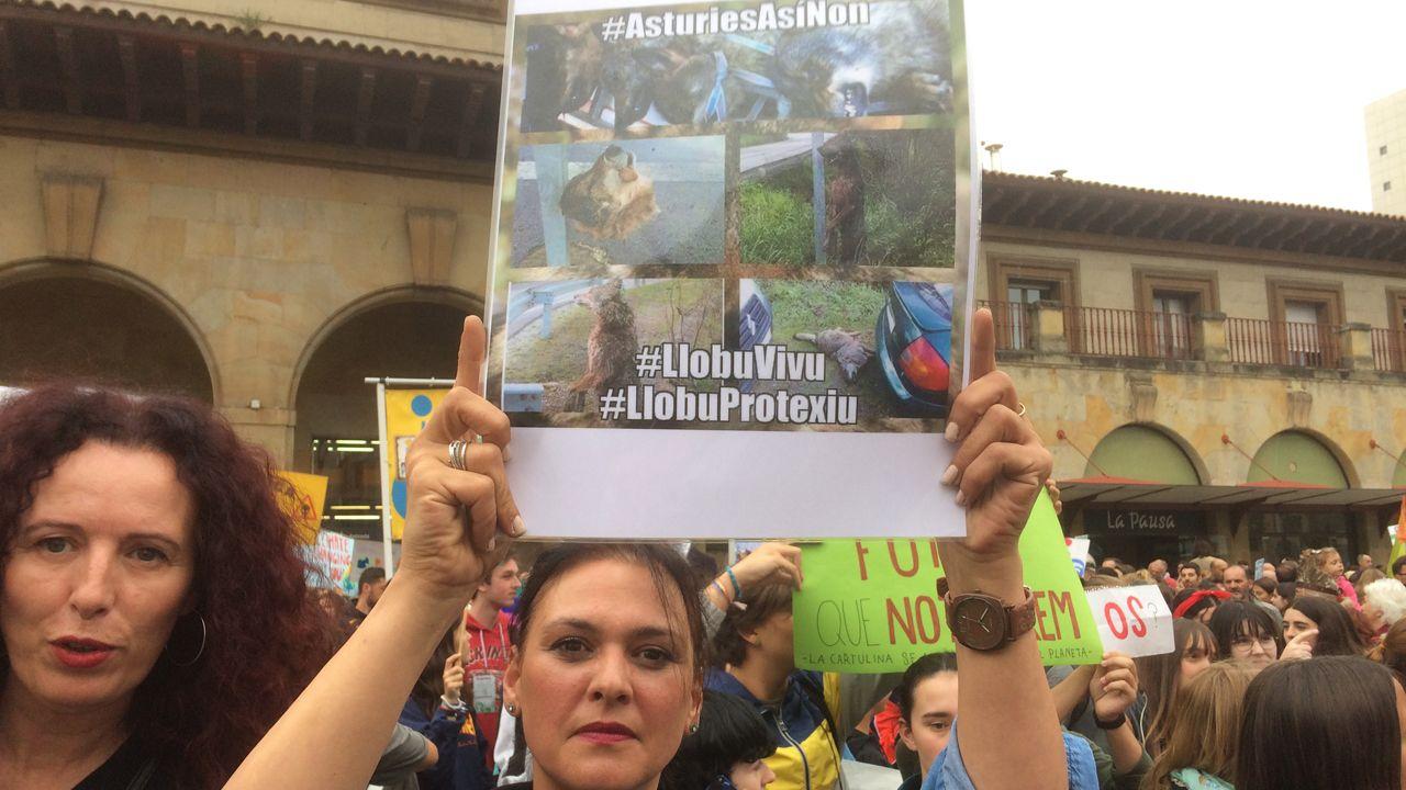 Huelga Mundial por el Clima en Oviedo