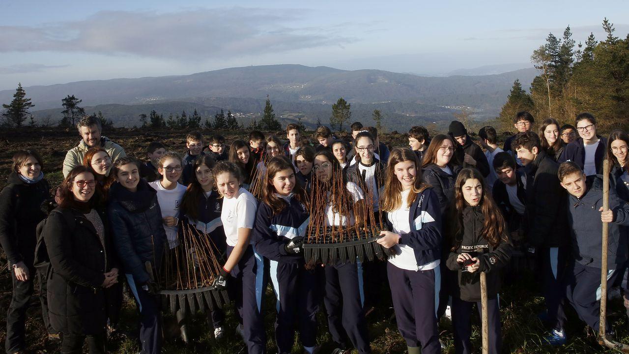Salida de reforestación en Lousame-Noia, plantación de árboles en Froxán alumnos del colegio Colegio San José de Cluny