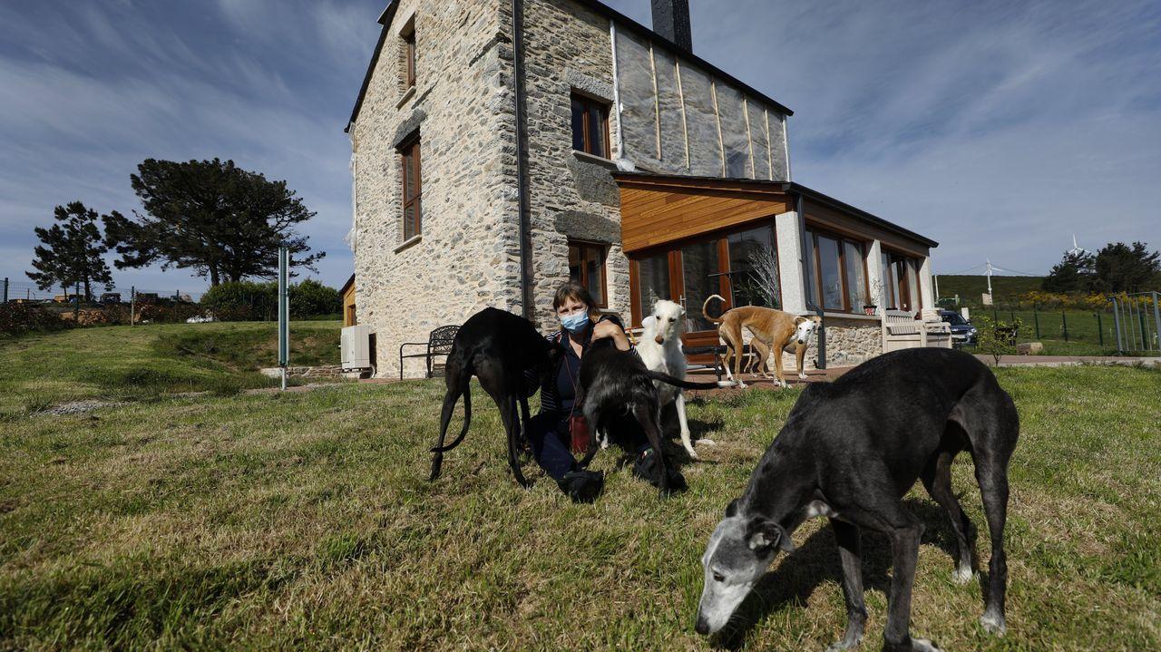 Pascale Claude Monique Huguette con varios de sus 13 galgos ante la casa de O Viso, en Ourol, que ha rehabilitado para vivir ella