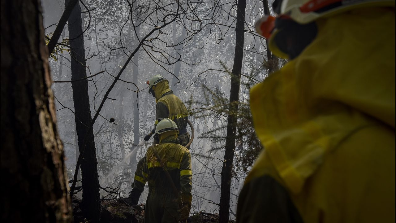 Álbum de fotos: Las imágenes del incendio entrePorto do Son y Ribeira