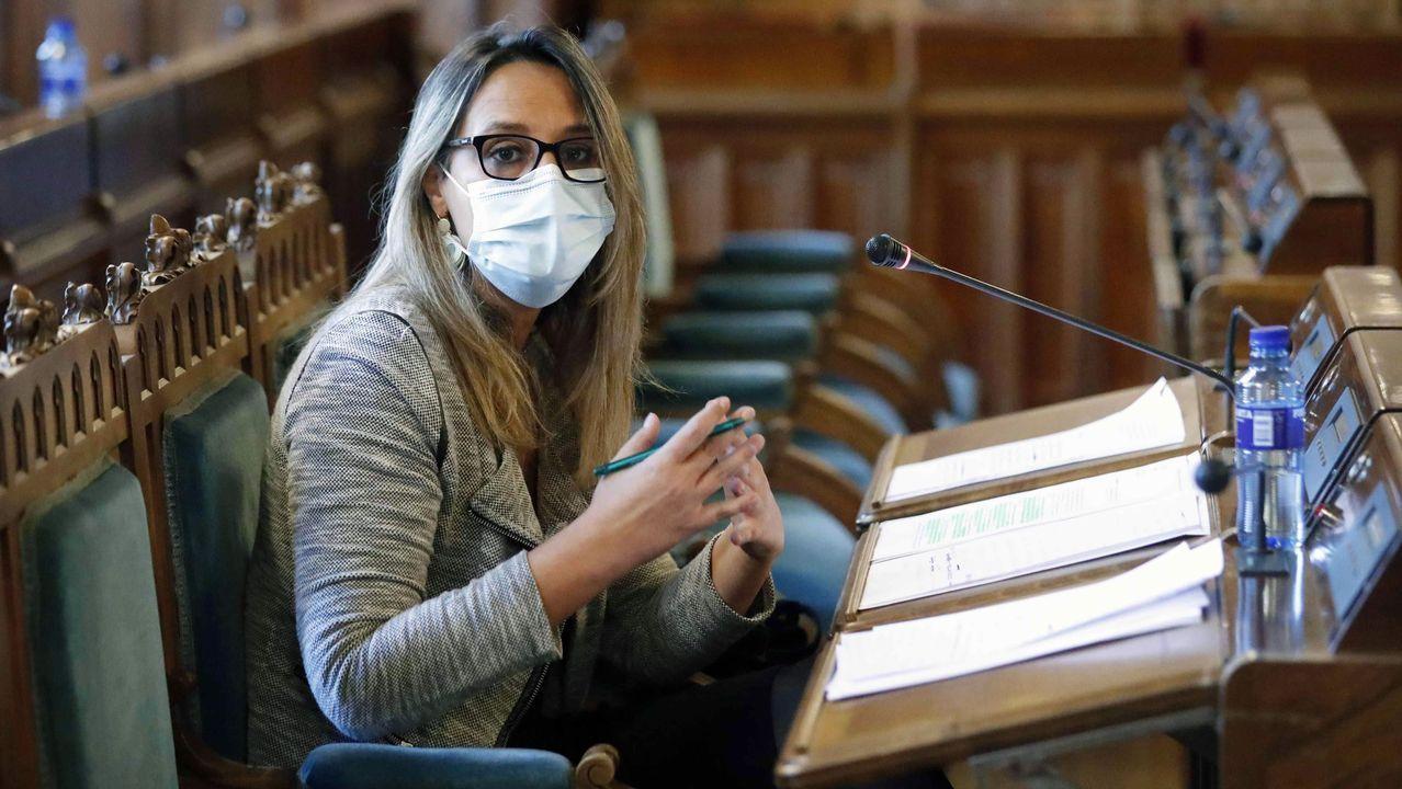 La consejera de Presidencia del Principado de Asturias, Rita Camblor