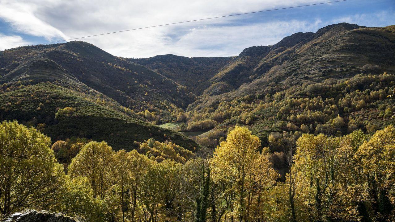 El estudio en el que se intenta datar la antigüedad de los bancales vitícolas se centra en una zona de la margen derecha del Sil conocida tradicionalmente como Val do Frade y situada en la parroquia de Vilachá de Salvadur, en A Pobra do Brollón