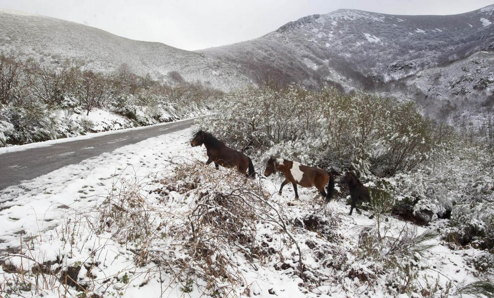 Un recorrido por la cueva de Tara en imágenes.Este año ya se registraron nevadas en la sierra de Os Ancares