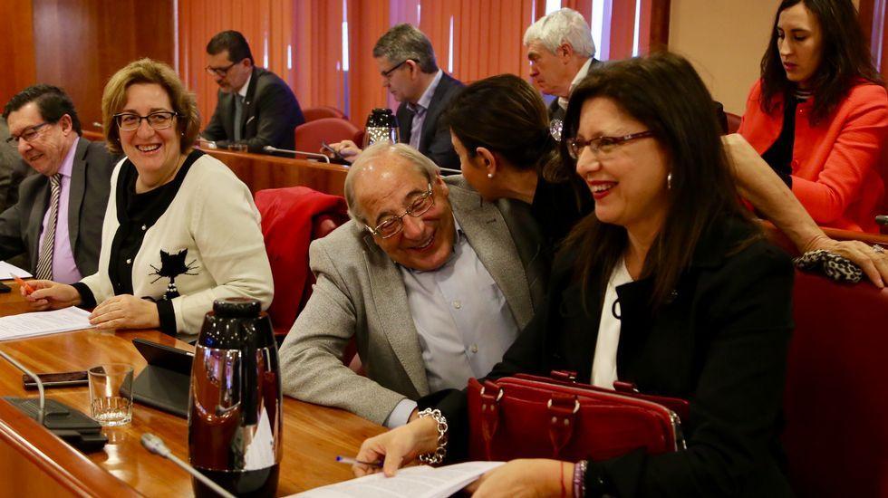 Pleno del mes de marzo en Vigo