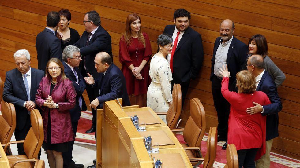 El grupo parlamentario socialista