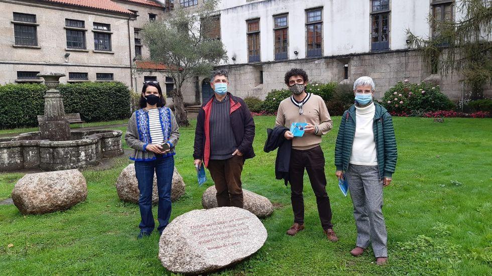 El epidemiólogo Juan Gestal responde: ¿Cuándo podremos volver a la normalidad?.Imagen de archivo del tren Avant en Ourense