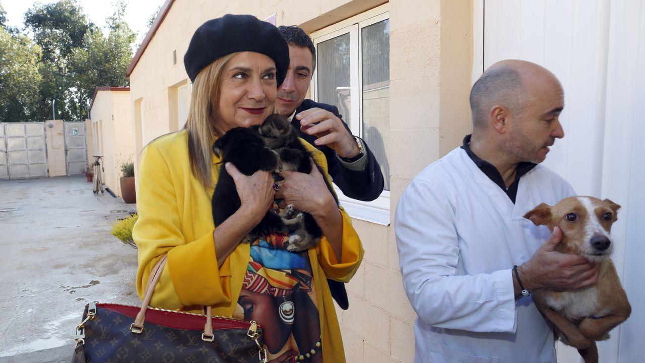 La presidenta de la Diputación Carmela Silva visita la Caan en Meis.El millonario portugués, en una foto durante uno de sus viajes