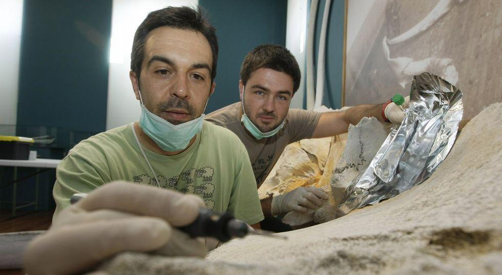 Presentando la foca «Camelle».José Martínez es partidario de especializar el Museo do Mar en la caza de ballena y hacerlo exclusivo.