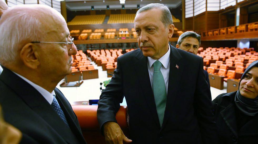 Multitudinaria manifestación de turcos en Alemania en defensa de Erdogan.Protesta contra Gülen en Ankara